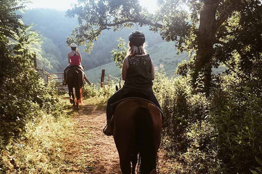 horseback riding in charlottesville